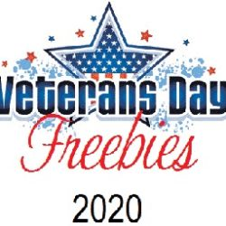 veterans day freebies 2020 image with a red white and blue flag inside of a star